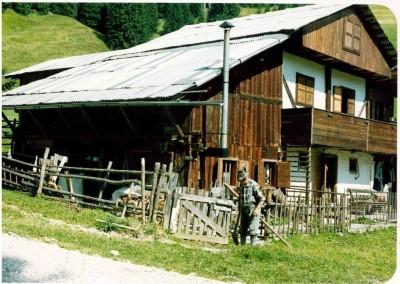 ristrutturazione di casa in legno a Val Visdende, prima